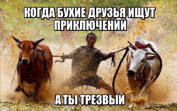 сайт про гаджетов