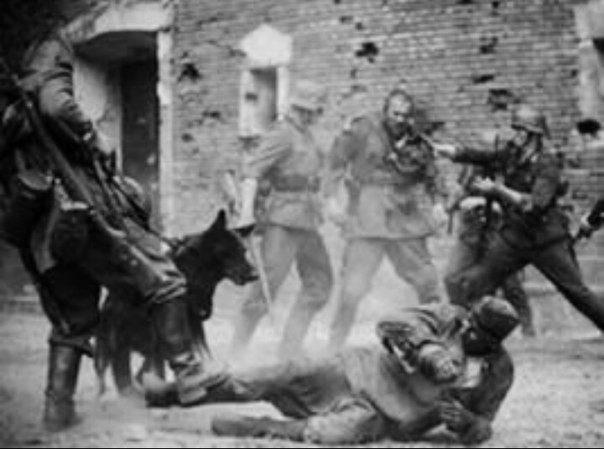 Картинки 70 лет обороне брестской крепости