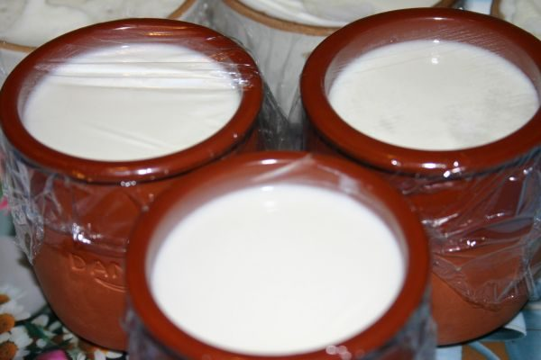 Как в домашних условиях приготовить йогурт ребенку