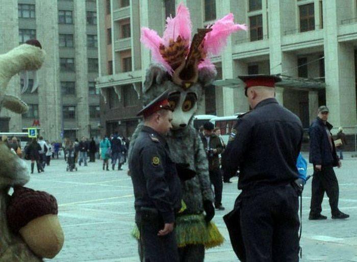 Фото приколы с днем россии