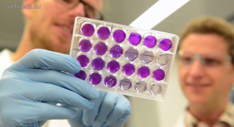 Новое лекарство от гепатита в