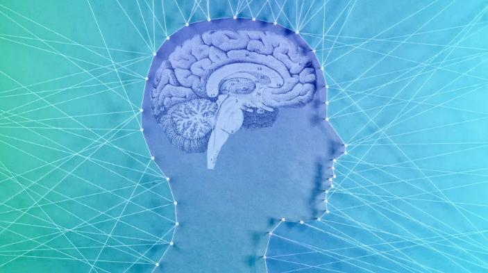 Почему наш мозг цепляется за ложные убеждения?