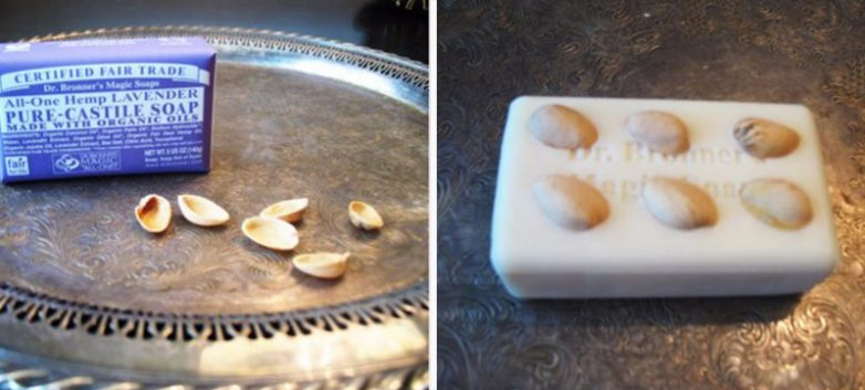 Как обустроить курятник для несушек своими руками 61
