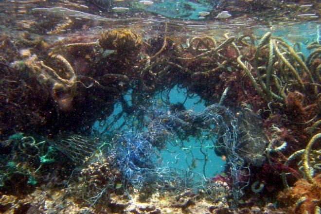 Человек, остановись! Гигантское мусорное пятно в Тихом океане