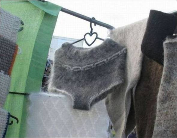 Only in Russia ...