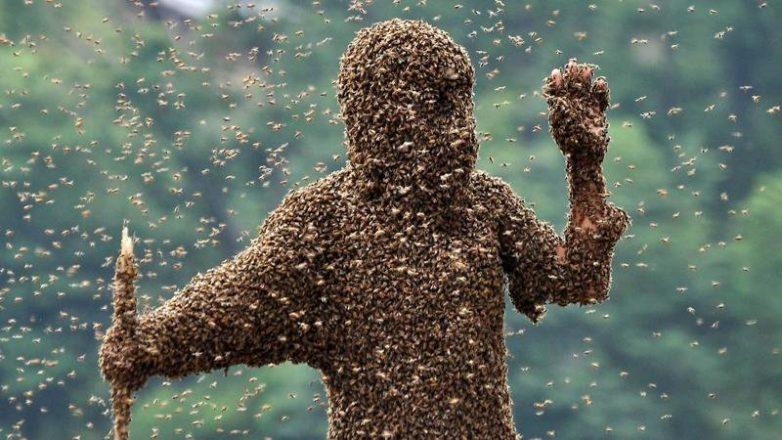 Шокирующие насекомые. Аж мурашки по телу!