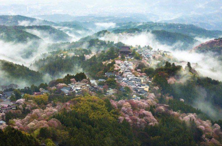 http://image3.thematicnews.com/uploads/images/68/22/63/92016/06/27/9b8e63b37d.jpg
