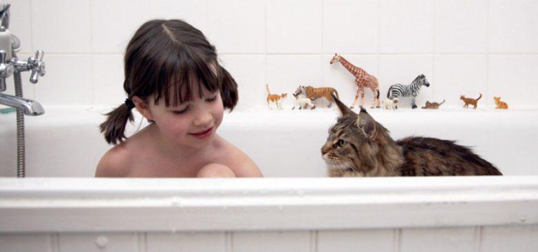 f7185ad9b2 Кошка, которая помогла больной аутизмом девочке