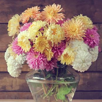 Эффективные способы оживить цветы