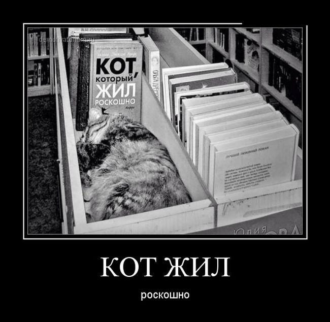 Демотиваторы про библиотеки