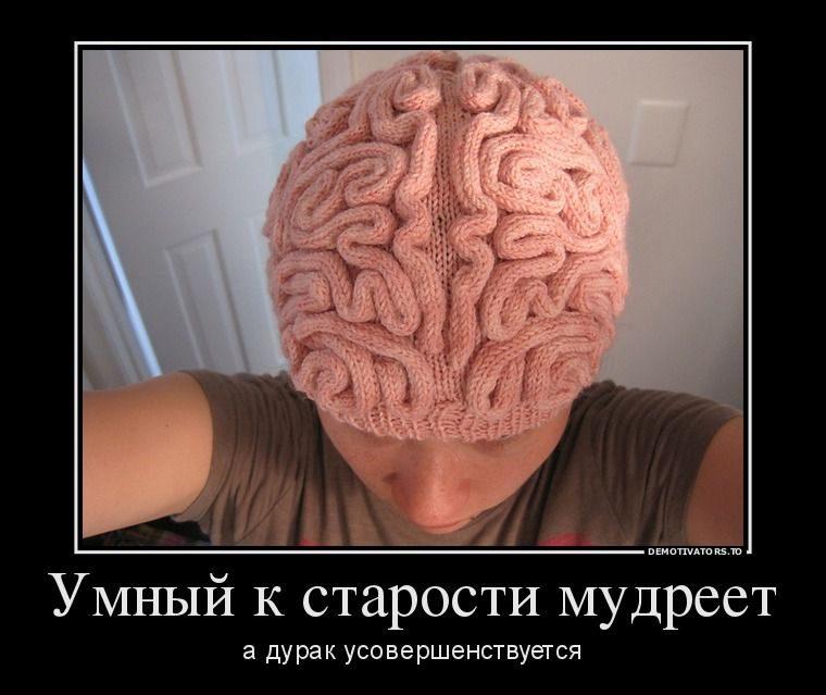 фото приколы мозг прохладную погоду сырость