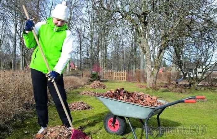Какие работы не нужно делать в саду по весне