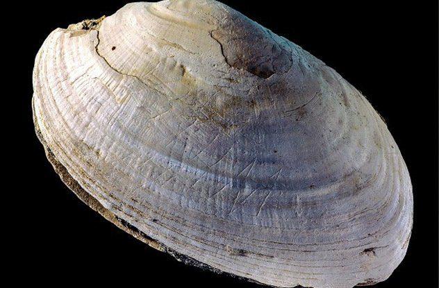 10 древнейших дошедших до нас артефактов