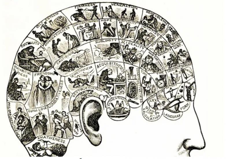 Запоминание как спорт, или Мозг на прокачку