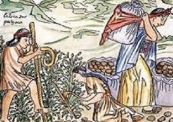 Ещё 20 удивительных исторических фактов, которые не найти в учебнике истории