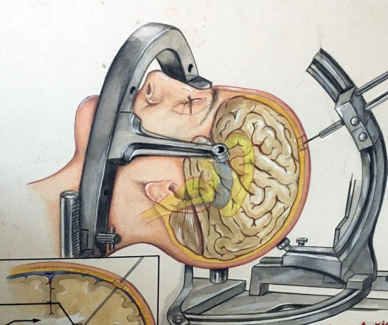 10 вопросов, над которыми учёные до сих пор ломают мозг