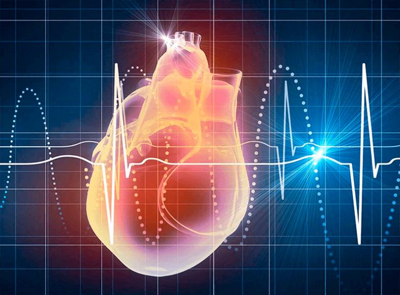 Как понизить частоту сердечных сокращений
