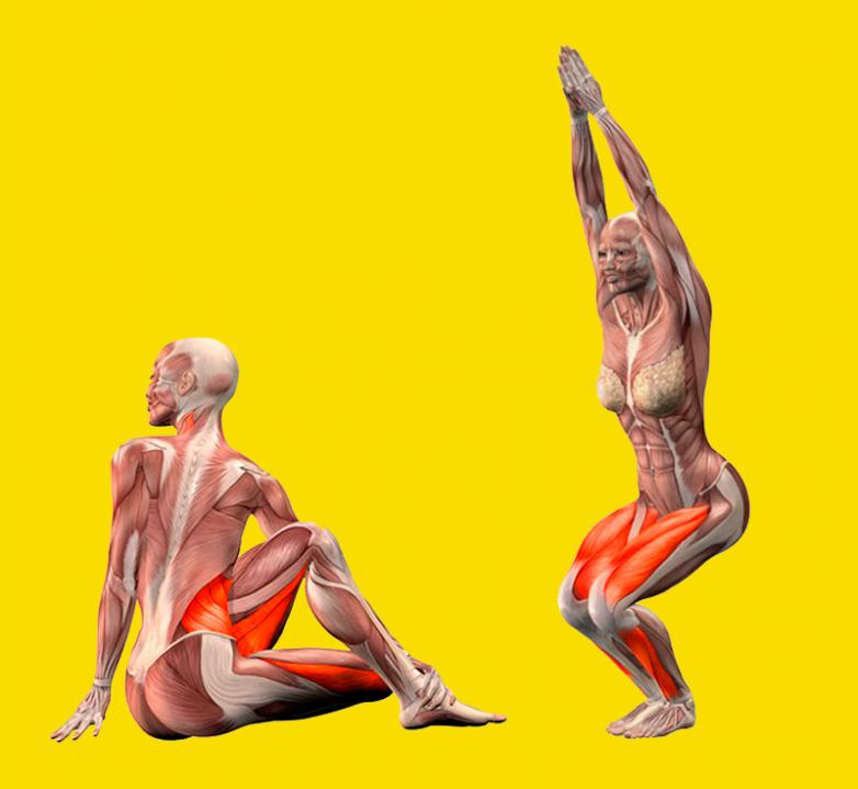Упражнения для улучшения пищеварения