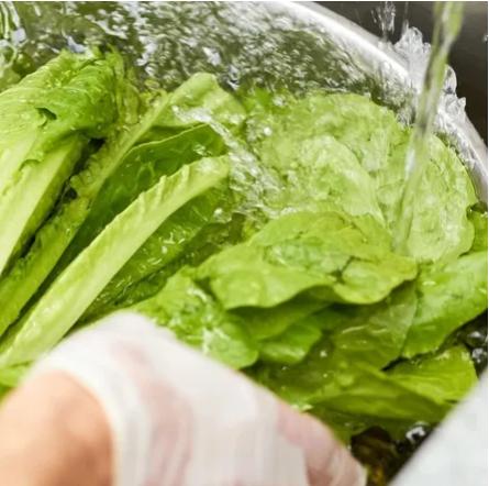 Учёные объяснили, как лучше всего мыть овощи