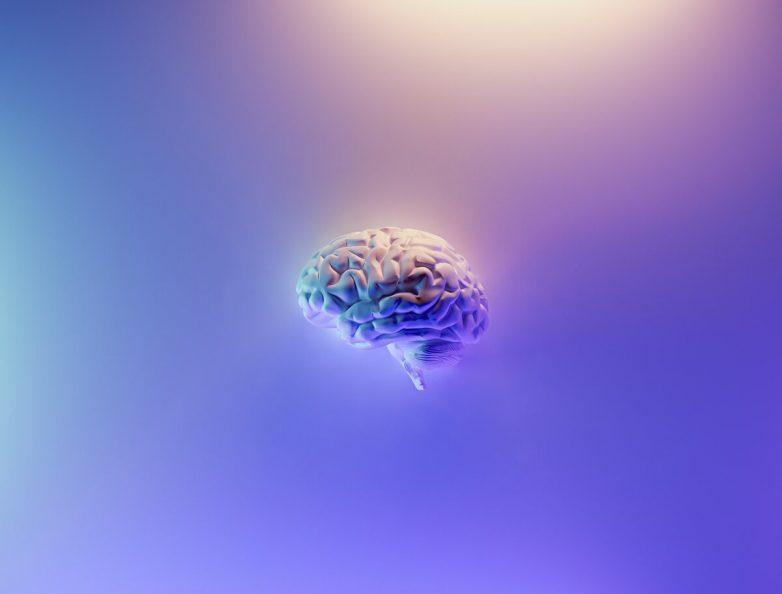 Тест: какое полушарие мозга влияет на ваше поведение?