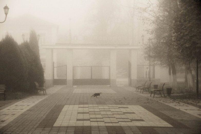 Туманное утро в Ельце