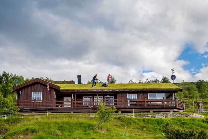 18 фотографий из Норвегии, которые удивляют, восторгают и обескураживают
