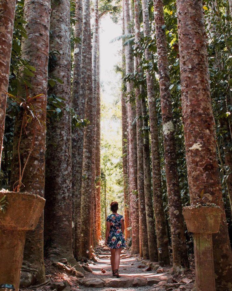 Заброшенный испанский замок в австралийских джунглях, который облюбовали туристы