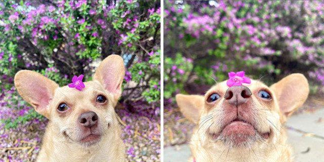 30 замечательных фотографий, которые греют душу и улучшают настроение