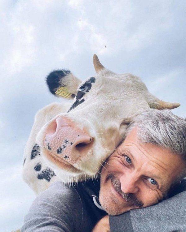 Животные, которые вызовут улыбку и поднимут настроение