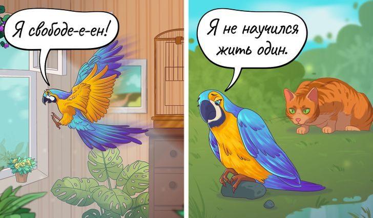 Комиксы, которые еще раз напомнят каждому из нас, что мы в ответе за тех, кого приручили